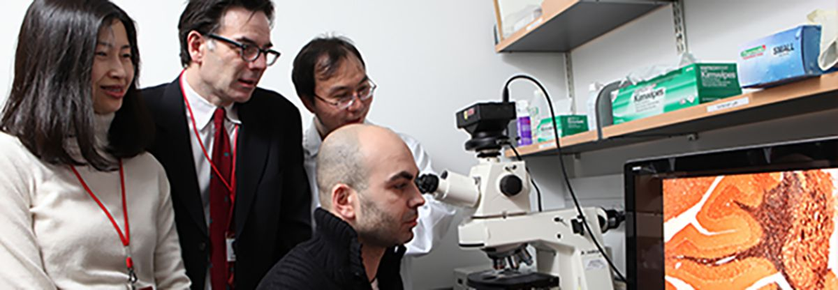 Physicians Looking At Microscope